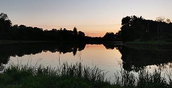 Przyroda i otoczenie gminy Kobiór